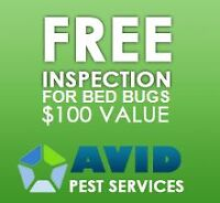 Highly Experienced Pest Control Team In Hamilton, Ontario