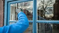 WINDOW CLEANING + REBATE COUPON ON REGULAR CLEANING