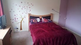 Double ensuite bedroom with wifi, garden, garage and patio