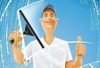WINDOW CLEANING PLUS -  carpets, cars, yards, homes, etc..
