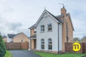 4 Bed house to let - Portadown