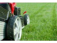 Wealden lawn mowing and edging maintenance