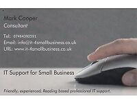Friendly IT Support for Small Businesses