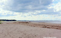 Près de la plage LES ABOITEAUX. A 3 MINUTES DE MARCHE DE LA PLA