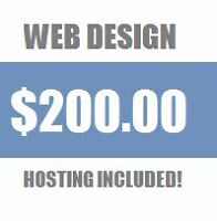 Professional websites with hosting!