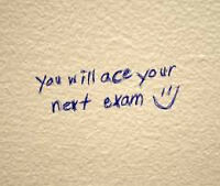 High School Students! Need help studying for exams? Essays due?