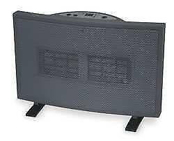 Dayton Ceramic Heater