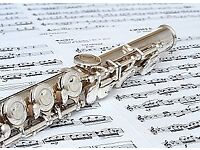 Qualified music teacher offering lessons in Flute & Piano