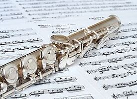Grades 1-4 Flute and Music Theory Lessons Belfast