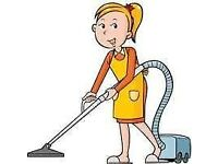 HAUSE CLEANER