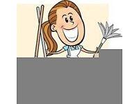 Cleaner,housekeeper