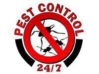 Pest control £45, BEDBUGS, COCKROACH, MICE,RATS,PEST CONTROL,PESTCONTROL SOUTH WEST LONDON