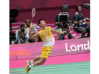 Looking for advanced badminton singles partners