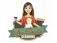 Mrs sparkle spring cleaning