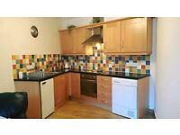 1 bedroom ground floor flat in Ballymoney.
