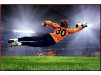 Goalkeeper Wanted for Sunday League Team!