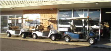 PETROL AND ELECTRIC CARTS - Utilities / Transporters / Commercial