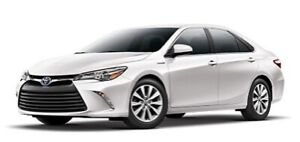 Toyota Camry Hybrids For Rental/Uber/Taxify/Ola
