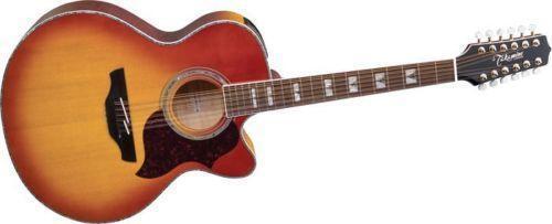 takamine 12 string acoustic electric guitar ebay. Black Bedroom Furniture Sets. Home Design Ideas