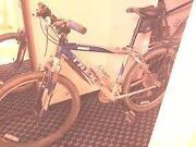 Used Trek Mountain Bikes