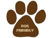 Dog Friendly Holidays, Luxury Caravan & Lodge Hire, Elm Bank Coastal Park, Berwick-upon-Tweed
