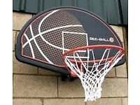 Bee-Ball Basketball Hoop