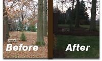 FALL CLEAN-UP SERVICES, YARD CLEANUP, PROPERTY CLEAN-UP