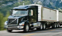 Class 1 driver seeking driver position (US/CAN)