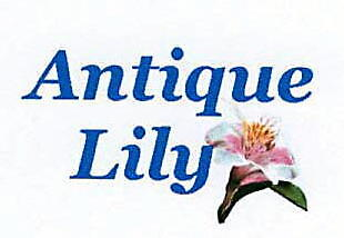 Antique Lily