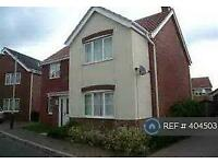 5 bedroom house in Speedwell Way, Norwich, NR5 (5 bed)