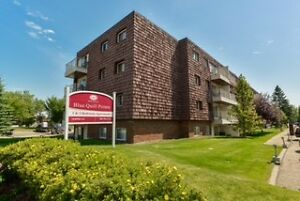 Great 1 bedroom apartments available now!