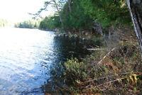 Treed 1.3 acre lot 170` on Julius Lake south of Loring