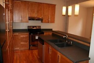 FOR SALE OR LEASE! 21 GOWER STREET St. John's Newfoundland image 3