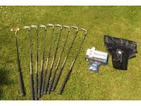 Set of Mizuno Ladies Right-handed Golf clubs with Bronty putter, golf bag and accessories