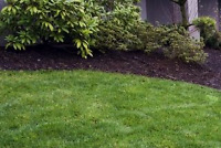 Lawn and Garden Maintenance/Spring Cleanup/Landscaping
