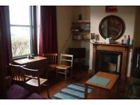 Double bedroom *for a student* in a friendly house, Bishopston.