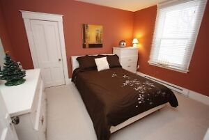 Awesome starter home...ideal for a young professional St. John's Newfoundland image 9