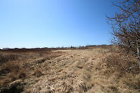 Approx 1/2 Acre | Second Pond | Conception Bay North