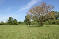 ESTATE LOT - LaSalle ON - 1.361 Acres