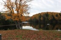 101 Acres Near Fundy Park with Private Lake and Camp***