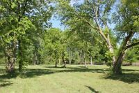 EXECUTIVE LOT - LaSalle ON - .975 ACRE