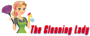 The Cleaning Lady Mirrabooka Stirling Area Preview