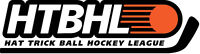Ball Hockey League: Looking for Goalies, Men and Ladies