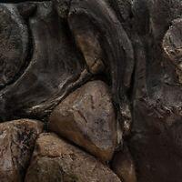 3D Aquarium Backgrounds - www.thefishroom.ca