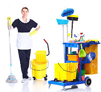 Day potter cleaner needed in Acheson area asap