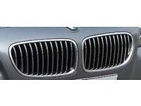 Genuine BMW F10/11 5 Series Chrome Grills