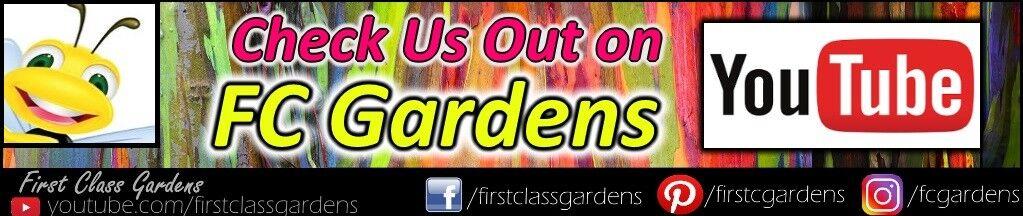 FC Gardens