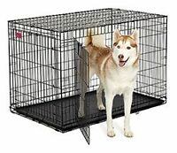 """Cage à chien 2 portes gros  large 48"""" dog cage crate NEUF !!"""