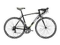 Barracuda Men's Corvus 2 Road Bike