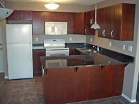 Lakewood - Beautifully Renovated 2 Bdrm Condo Suite for Rent